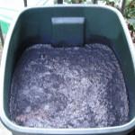 Indigo dye pot in the beginning stage.